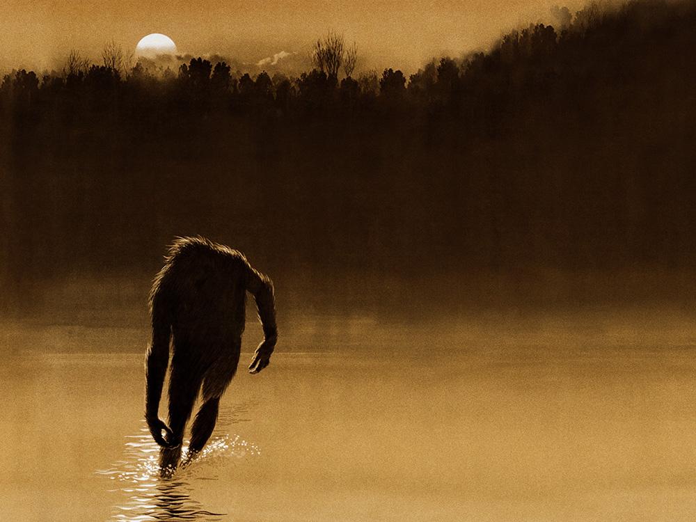 Legend of Boggy Creek, Image courtesy of Lyle Blackburn