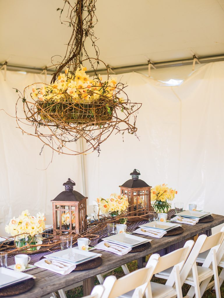 This daffodil chandelier is made with a wire basket and sheet moss. Bouquets of daffodils bring a breath of spring to a table. The table is set with brown place mats and a brown gingham runner.