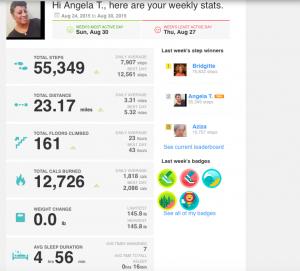 Angela's FitBit Record