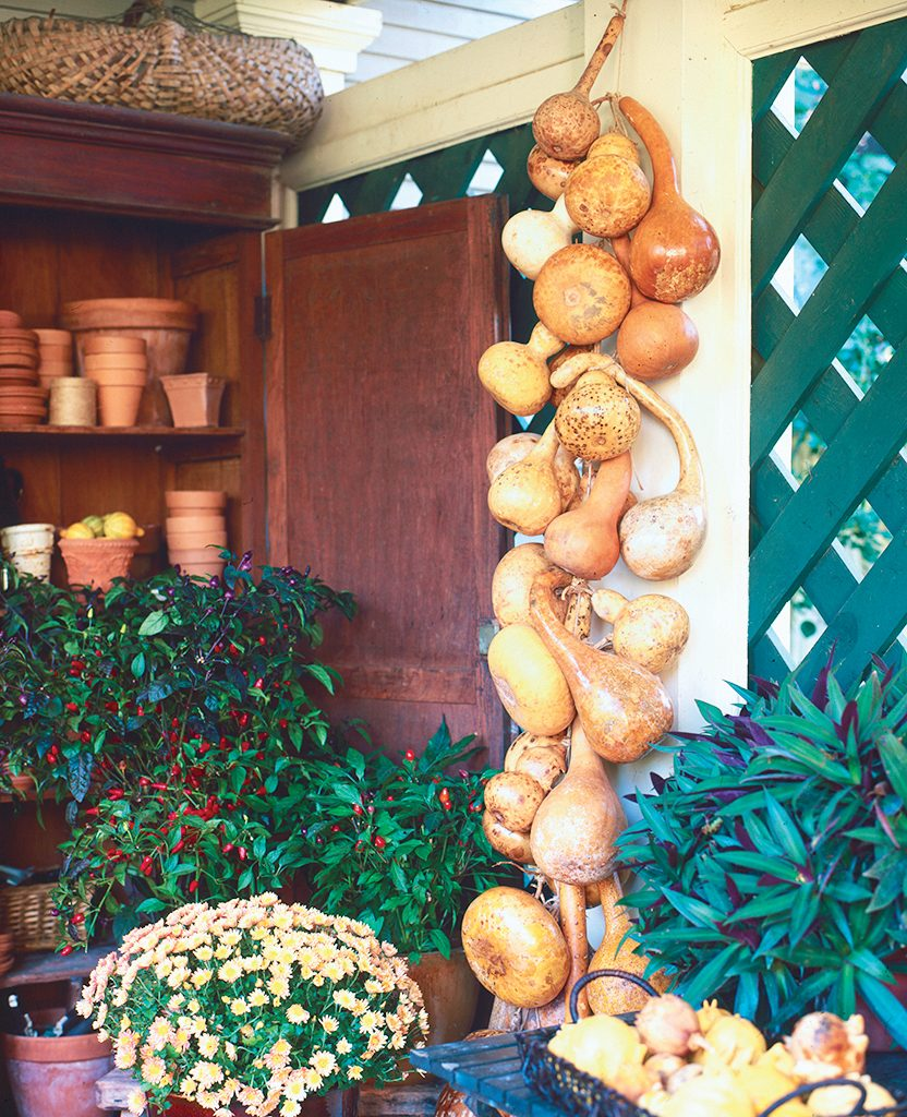 Hang a dried gourd garland in your garden or over your front door.