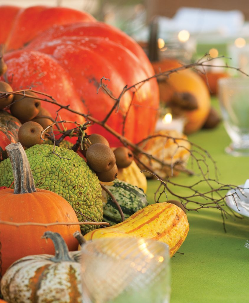Pumpkins, winter squash, wild pears, horse apples and gourds arranged down the center of a table as an alternative centerpiece.