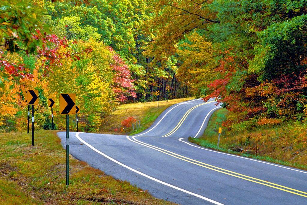 Scenic Highway 7