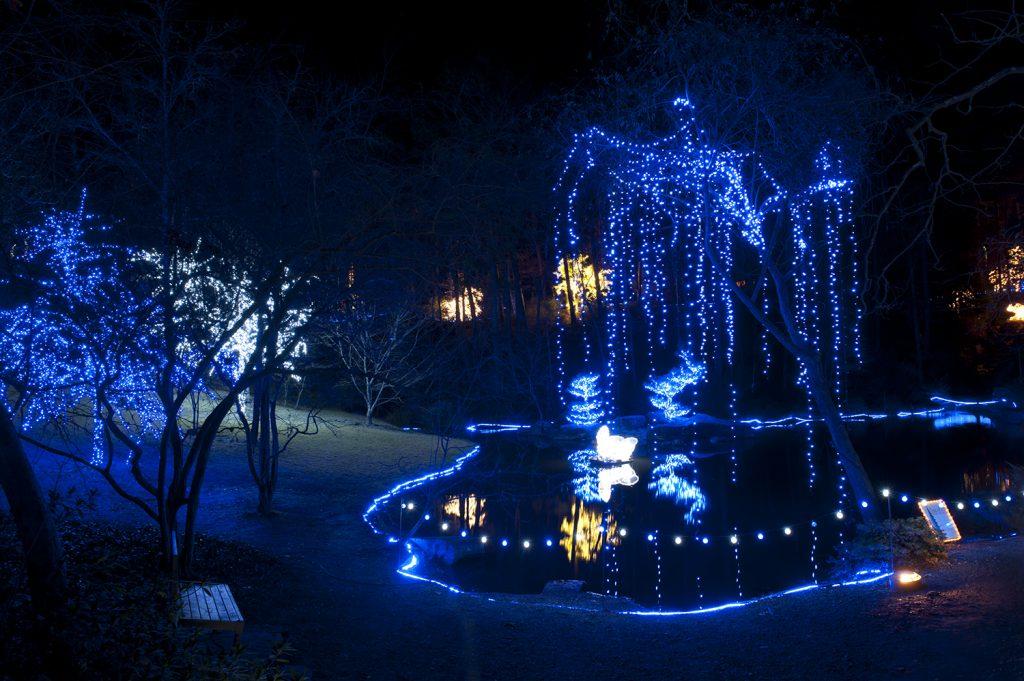 Garvan_Woodland_Gardens_Hot_Springs_2126
