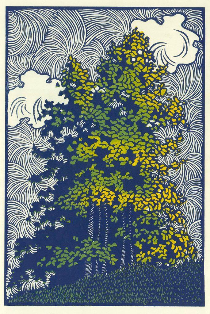 Poplar Grove