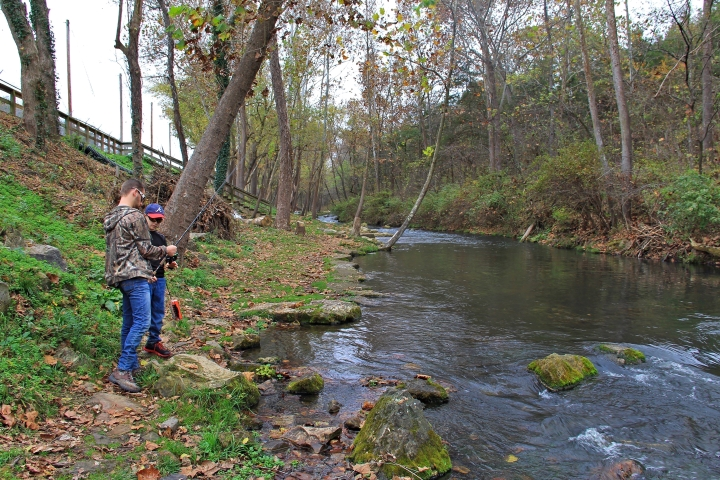 Dry Run Creek 1