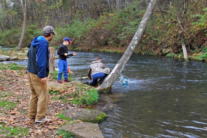 Dry Run Creek 2