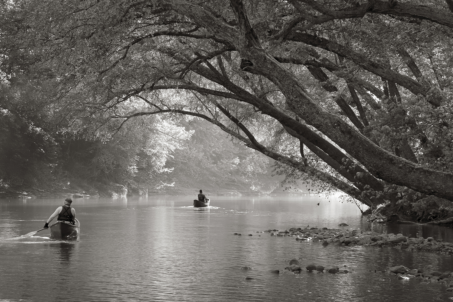 Two canoeists paddle into the late afternoon sunlight on the Mulberry River of Arkansas on 4 June 2011.