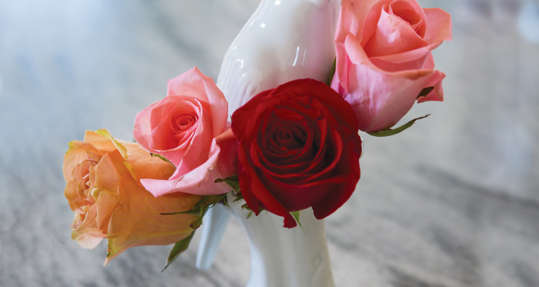 P. Allen Smith: Q&A - February is Rose Month