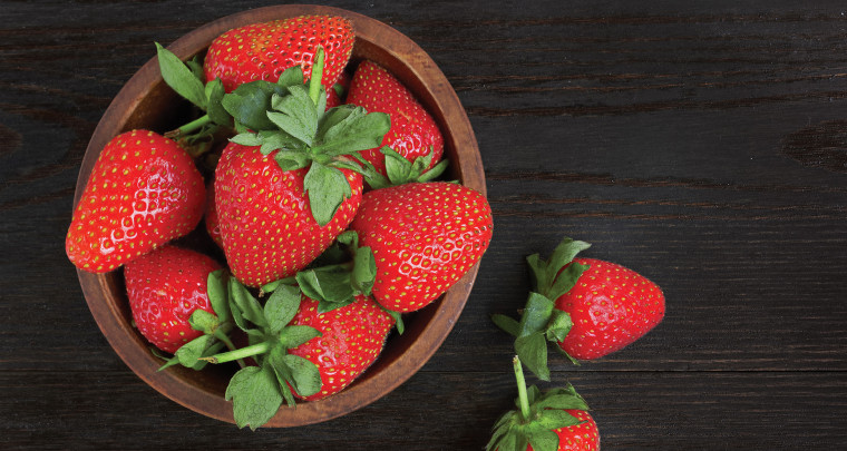 P. Allen Smith: Growing Spring Vegetables & Fruits