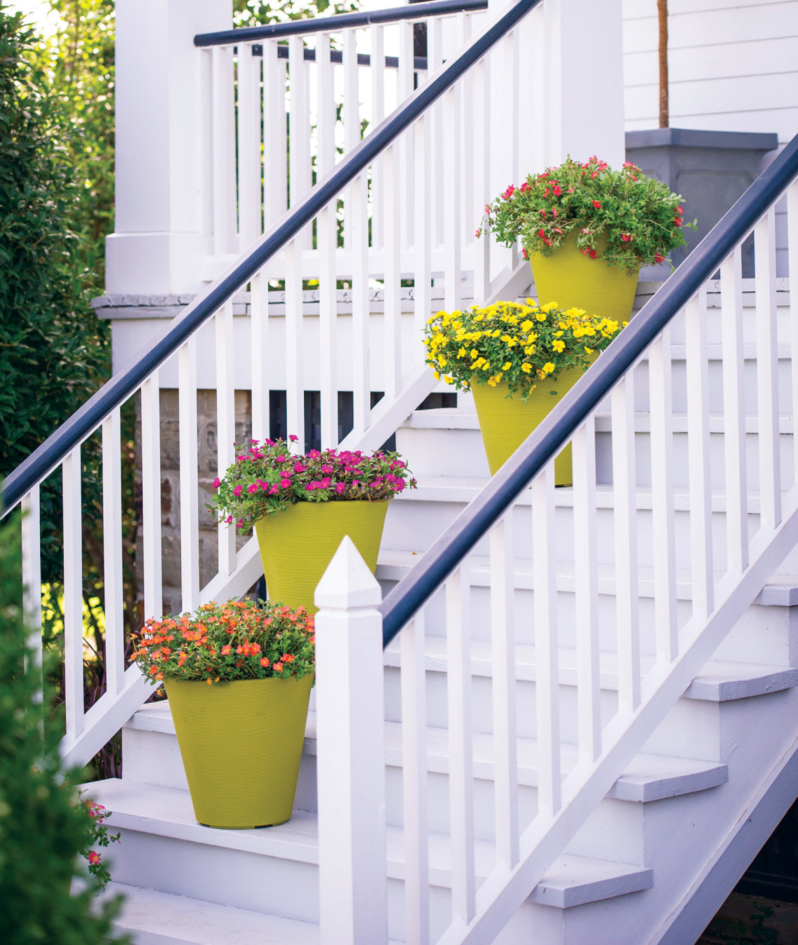 Ay mag ay is about youp allen smith container gardens ay mag - P allen smith container gardens ...