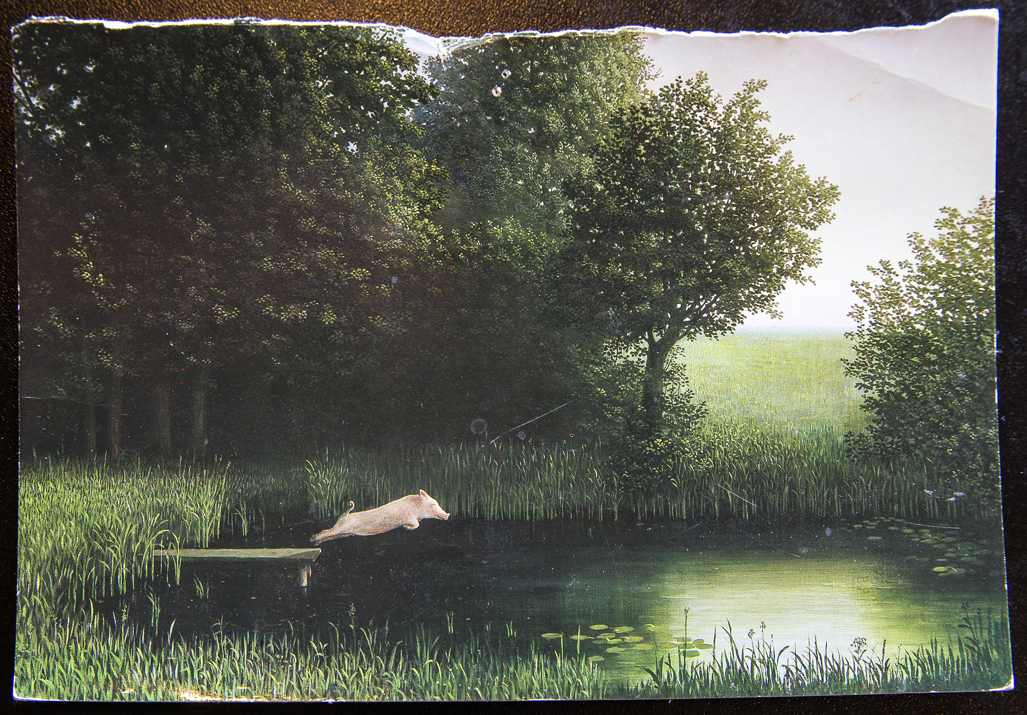 "The postcard that inspired Whole Hog Cafe North Little Rock's logo: ""Kohler's Pig"" by Michael Sowa"